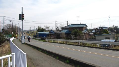 走っていたらいきなり終わって県道にぶつかりました。。皆左手に走って居たのでここから左に、、が間違いの元…。
