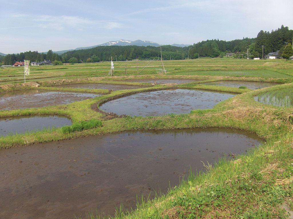 骨寺村荘園(一関本寺)2