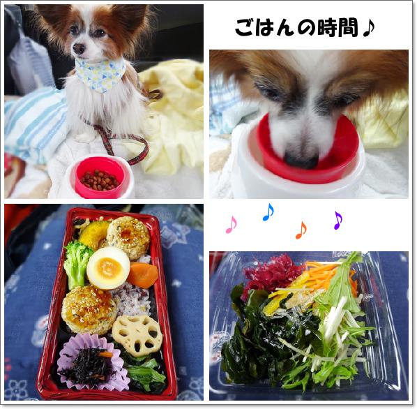 お昼だよ~♪