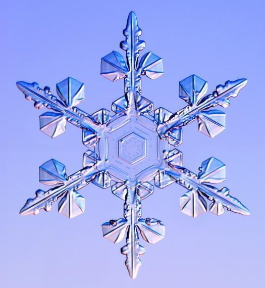 雪の結晶 (38)