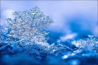 雪の結晶 (36)