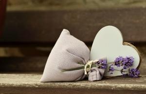 lavender-823600__340.jpg