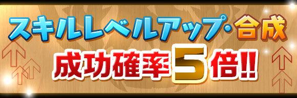 skill_seikou5x_201803221643443f8.jpg