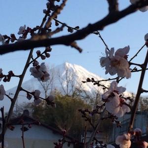 富士山.2017.2.26