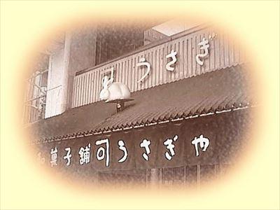 photo12_R.jpg