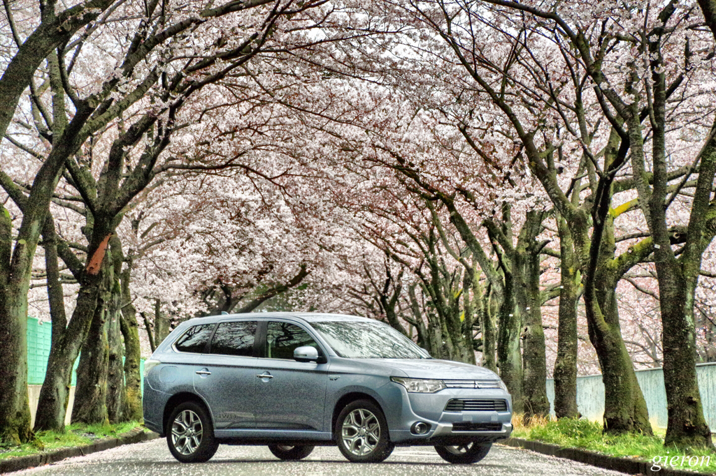 Mitsubishi Outlander phev under cherry blossoms 桜