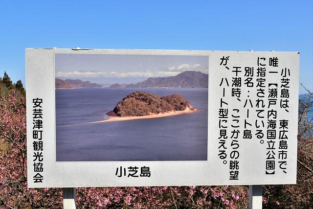 ハートの島5