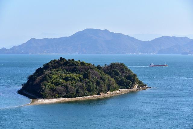ハートの島 6