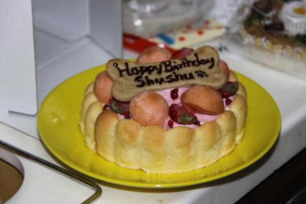 IMG_5330誕生日のケーキ8歳