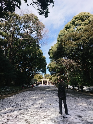 20181明治神宮参道