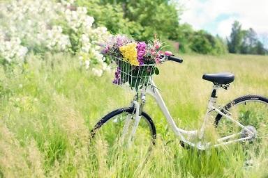 bicycle-788733_960_720.jpg