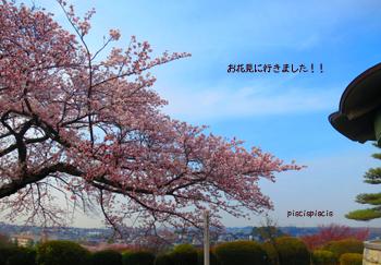 IMG_0733--.jpg