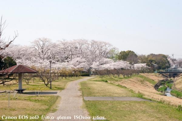 IMG_1449.jpg