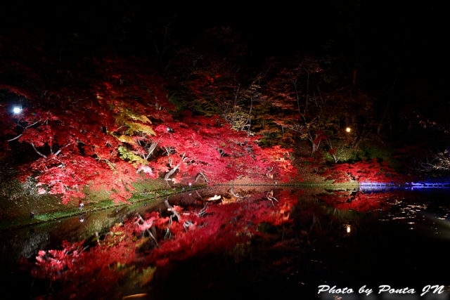 hirosaki171028-028.jpg