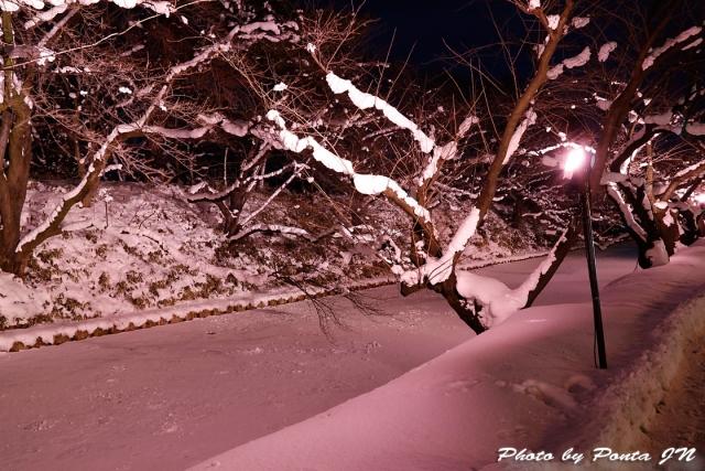hirosaki180127-011.jpg