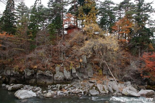 kyoboku1711-137.jpg