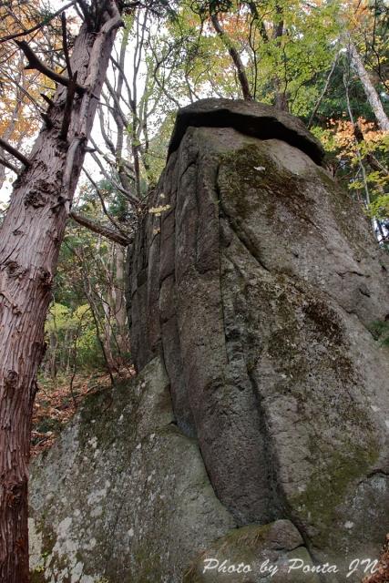 kyoboku1711-148.jpg