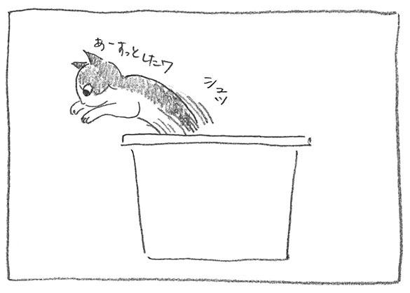 5-シュッ