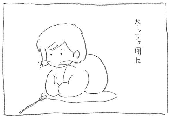 2-太っちょ用