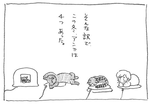 6-この冬