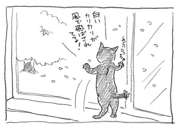 6-白いカリカリ