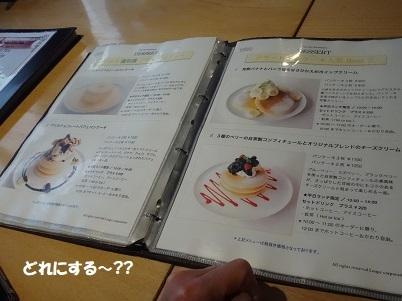 DSC08160 - コピー