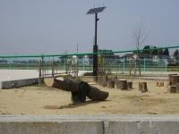 京坪川河川公園