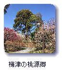 梅津の桃源郷