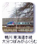 鴨川東海道本線大分つぼみがふくらむ