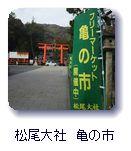 松尾大社 亀の市