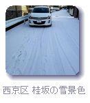 西京区の雪景色