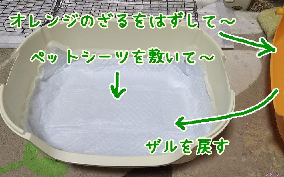 s-DSC_9318.jpg