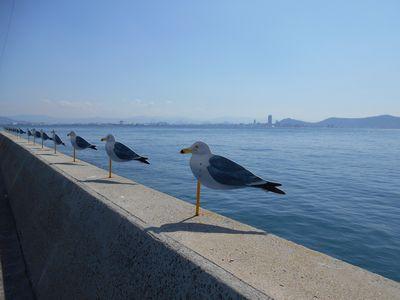 女木島カモメの駐車場