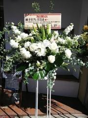【新店】純手打ち だるま-6