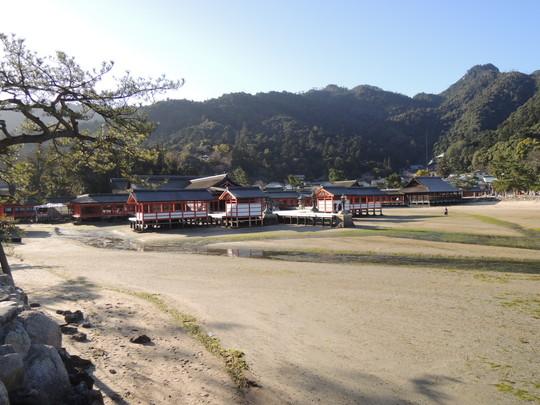 厳島神社(本殿の遠景)
