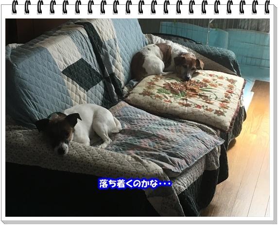 3136ブログNo3