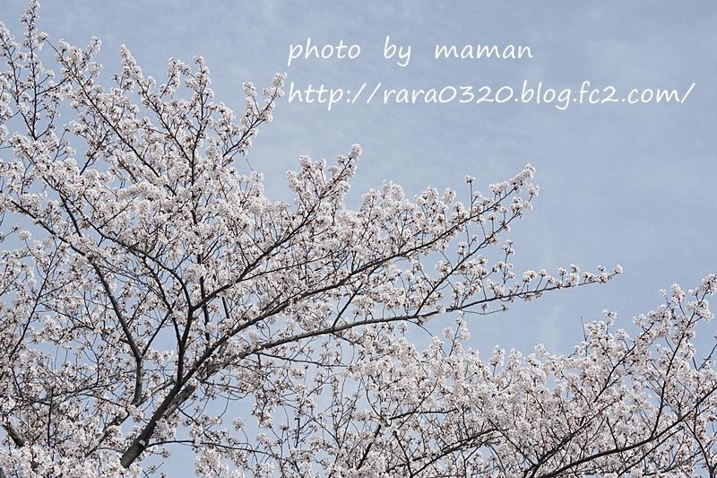 201803271803411ff.jpg