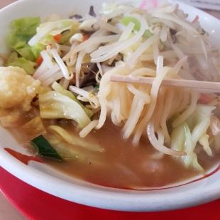 燈 野菜とんこつ 麺スープ