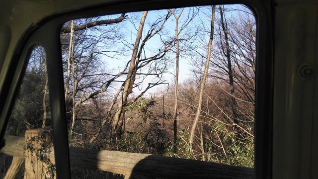 ミゼットの車窓から雑木林を