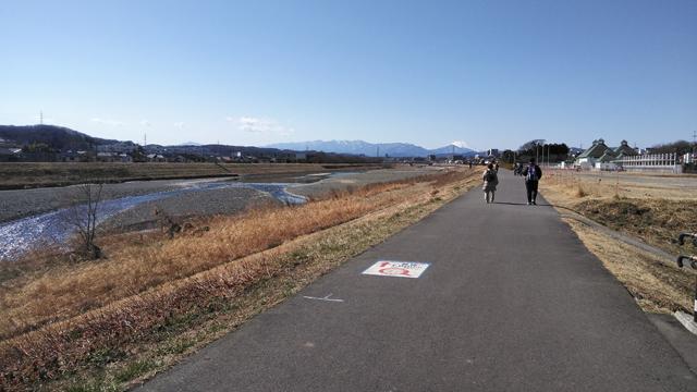 浅川の堤防を歩く