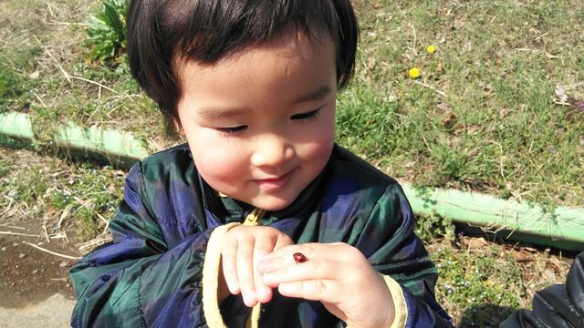 天道虫で遊ぶ子供