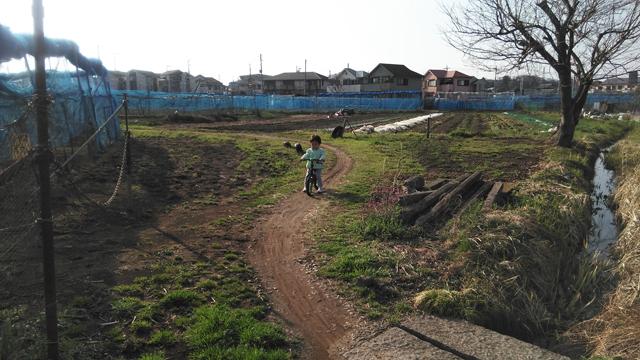 畦道を行く子供