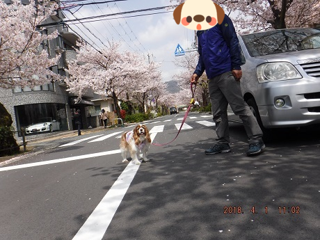 20180402081435cb4.png