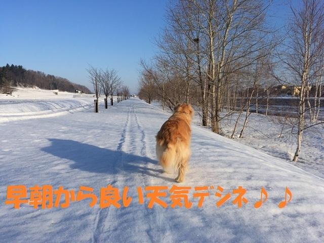 IMG_8799_PP.jpg