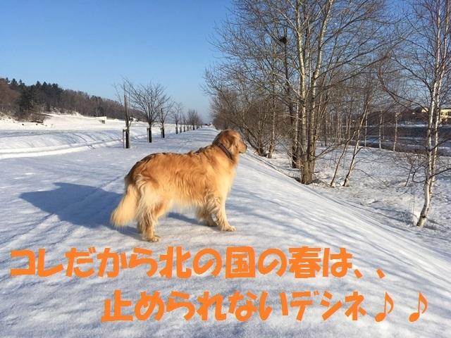 IMG_8800_PP.jpg