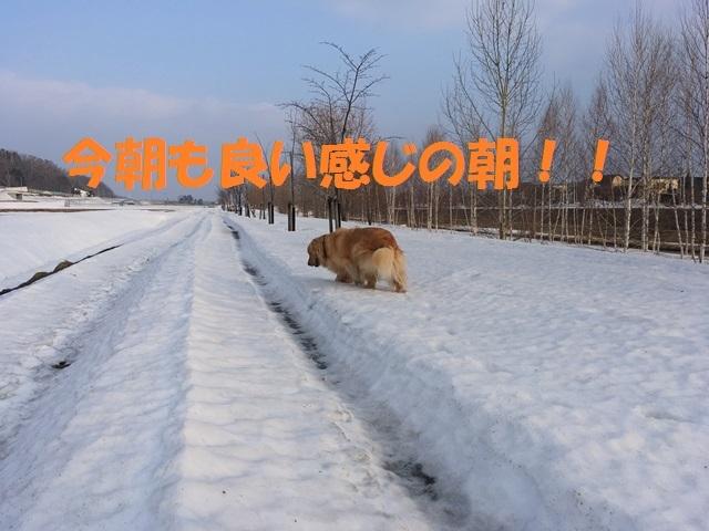 IMG_8848_PP.jpg