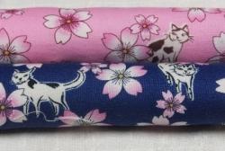 猫と桜 拡大