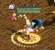 wasp0401.jpg