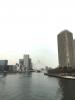 ツリー&中央大橋