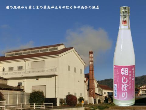 kamoizumi20.jpg